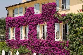 Grasse, France.