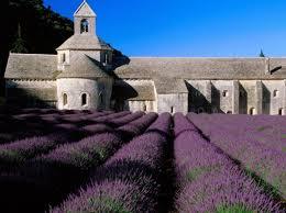 L'Abbaye de Senanque.