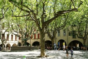 douceur-de-vivre-sur-la-place-aux-herbes-uzes-france+1152_12807558989-tpfil02aw-9788