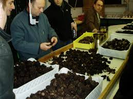 Truffle Market Richerenches